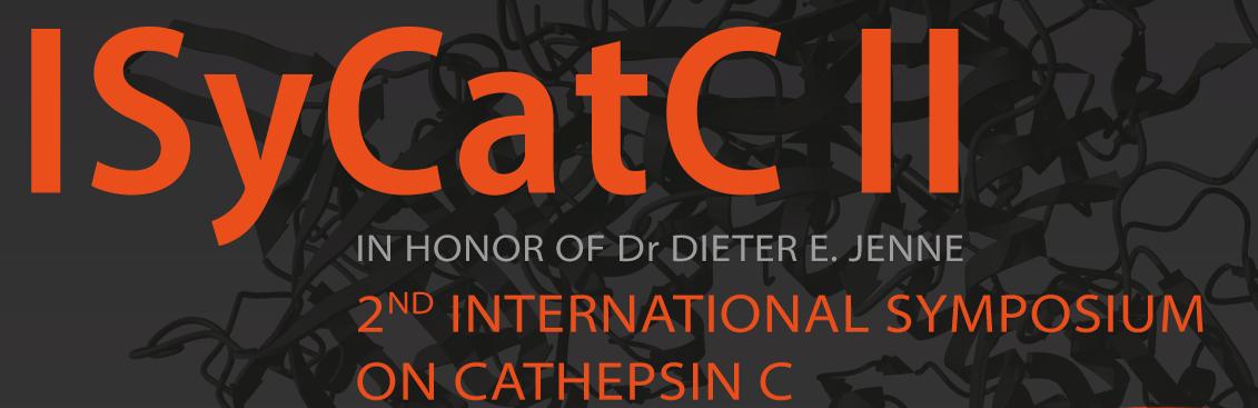ISyCatC II
